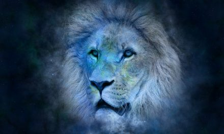 Le Lion et ses enfants