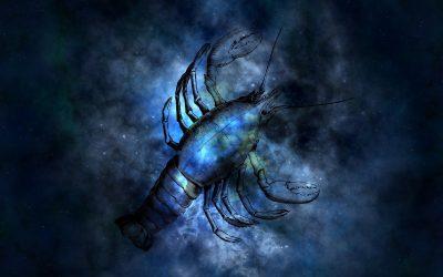 Le Scorpion et ses enfants