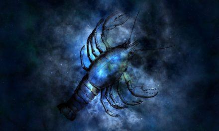 Scorpion : Amoureux